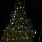 Vánoční stromeček 2015