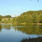 Rybník v Hlavňově
